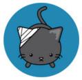 conseils de vétérinaires sur les chats