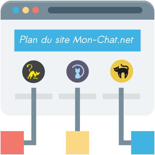 Mon-chat.net : plan